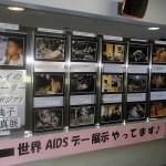 2012年12月横浜市港北区役所内で展示されている様子